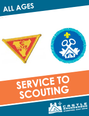 Service to Scouting